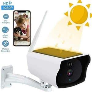caméra de surveillance sans fil Roebii