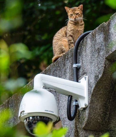 caméra de surveillance conseils installation
