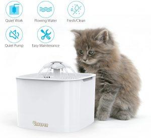 La fontaine à eau indispensable pour un chat