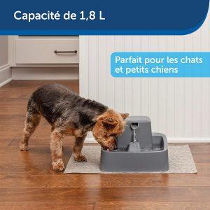 Une fontaine à eau pour chat de très bonne qualité
